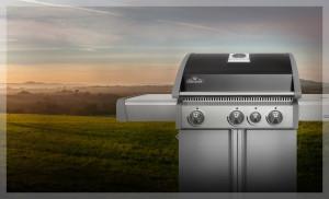 ps_napoleon-grills-main-triumph-410_582_D